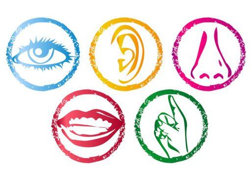 Projekt edukacyjny-Poznajemy świat za pomocą zmysłów- część 3
